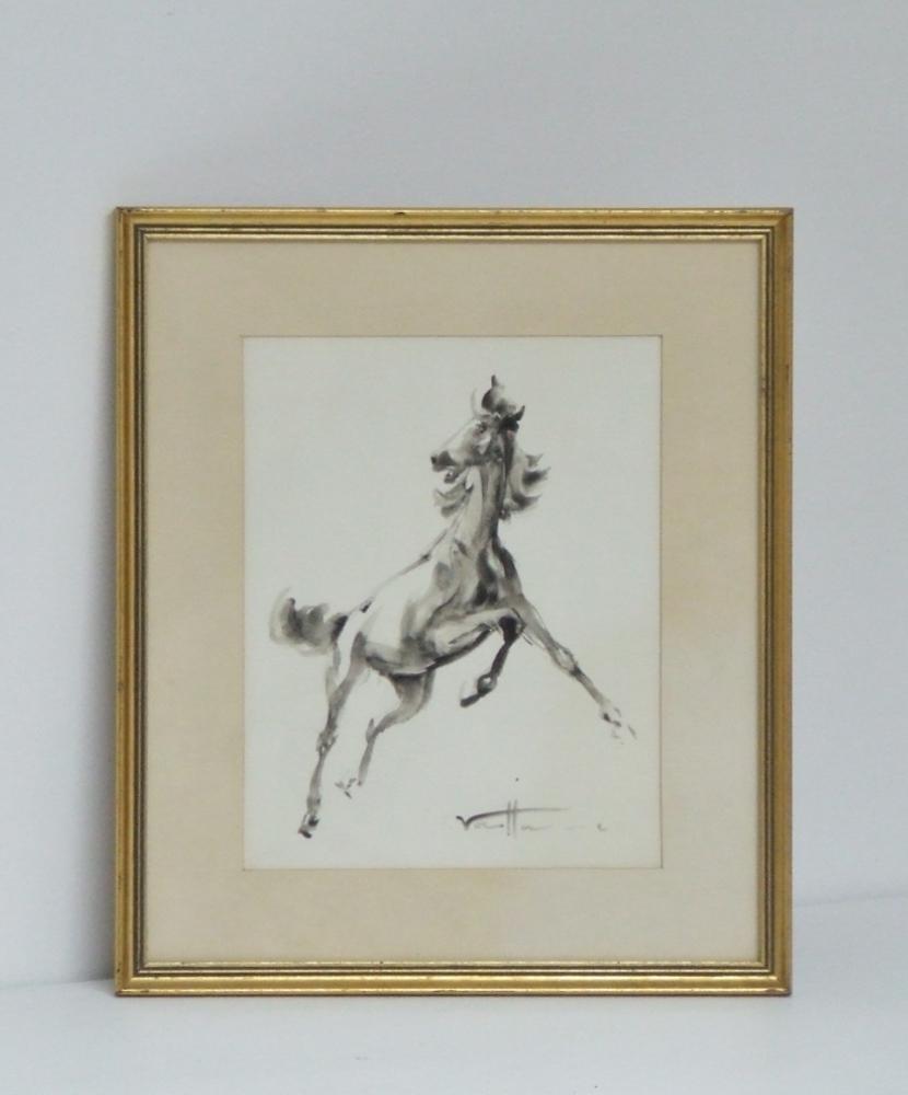 Horse circa 1970. (Cheval, Camargue, France)