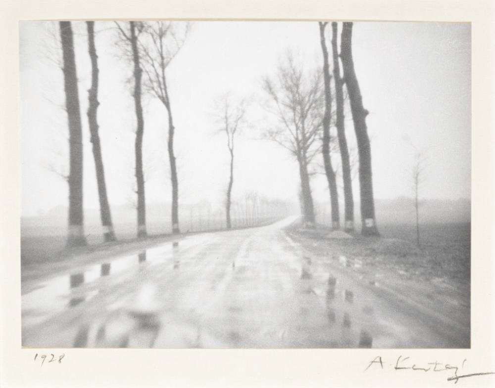 Foggy Belgian country road dated 1928.