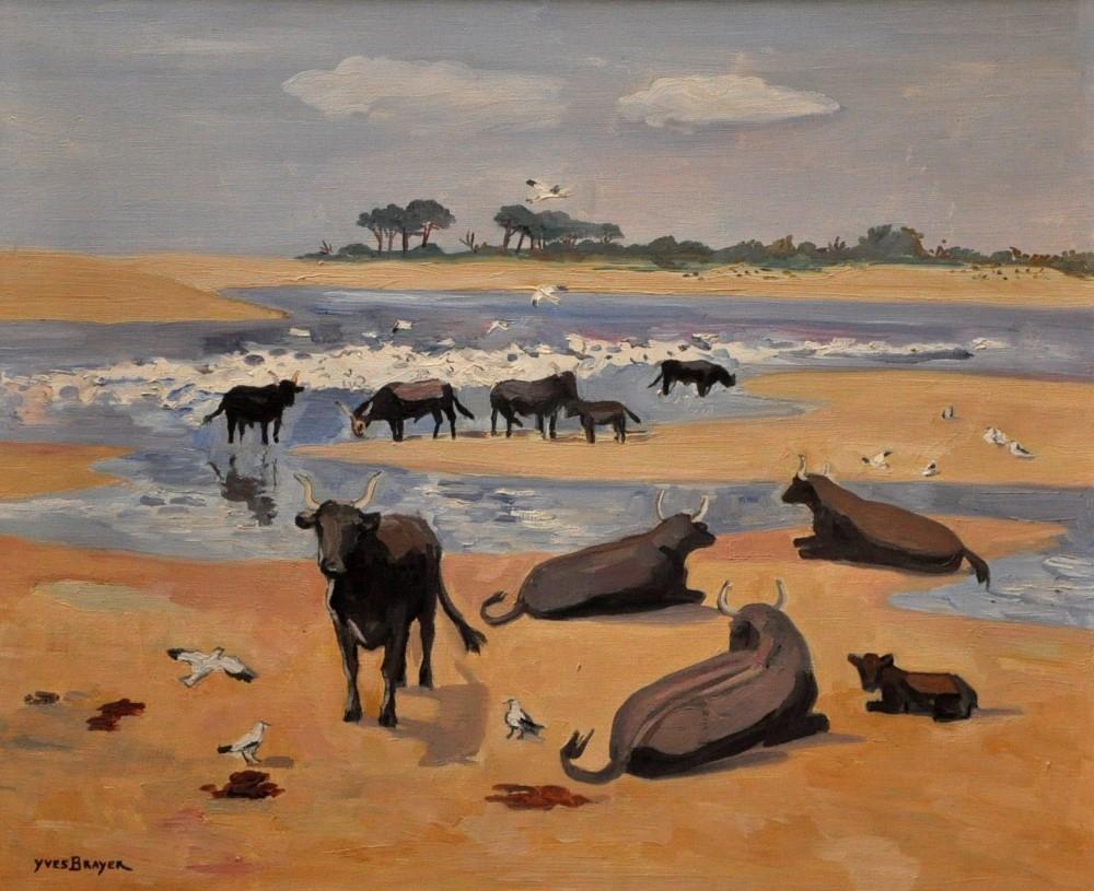 Les taureaux (The bulls)